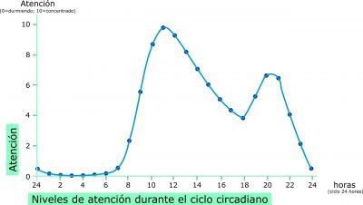 Nivel de atencion durante el ritmo circadiano por Recharge.Energy CC BY-SA 4.0