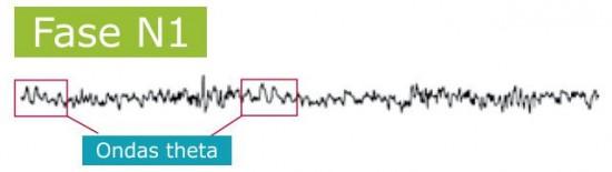 Fases del sueño, fase N1 y ondas theta. Por Recharge Energy. CC BY-SA 4.0