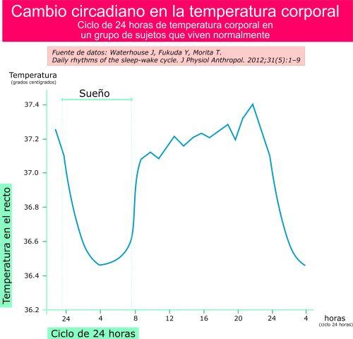 Temperatura corporal en un ciclo de 24 horas. Caída de temperatura durante la noche.Por Recharge Energy. CC BY-SA 4.0. Basado en el trabajo de Waterhouse J, Fukuda Y, Morita T. Daily rhythms of the sleep-wake cycle. J Physiol Anthropol. 2012;31(5):1–9