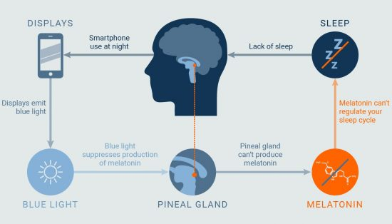 Infografia sobre los efectos de la luz azul y la melatonina. Fuente https://iristech.co/sleep-light-app/