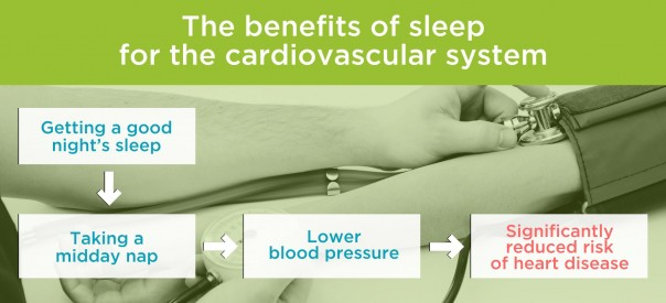 The benefits of sleep for the cardiovascular system. By Recharge Energy. CC BY-SA 4.0