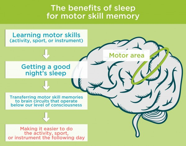 The benefits of sleep for motor skill memory. By Recharge Energy. CC BY-SA 4.0