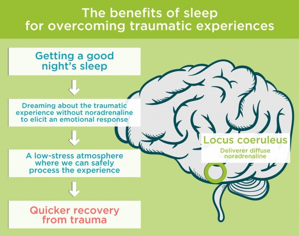 The benefits of sleep for overcoming traumatic experiences. By Recharge Energy. CC BY-SA 4.0
