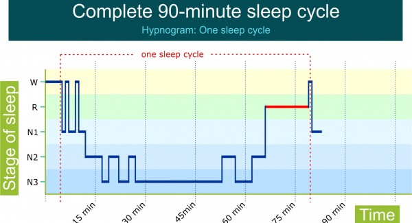 Hipnogram: complete 90-minute sleep cycle. By Recharge Energy. CC BY-SA 4.0
