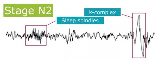 Sleep phases: N2 phase, sleep spindles and k-complex. By Recharge Energy. CC BY-SA 4.0